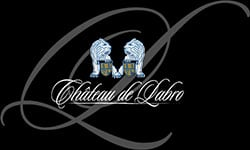 LogoPartenaireAudioVisionChateauLabro